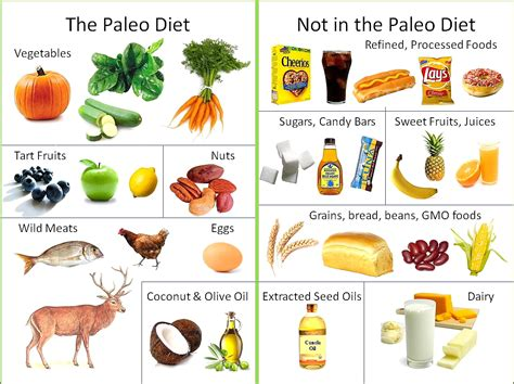 paleo diet food chart