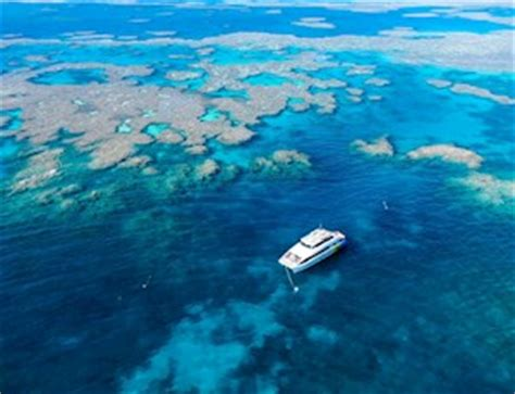 cairns to hamilton island by boat top things to do great barrier reef tours hamilton