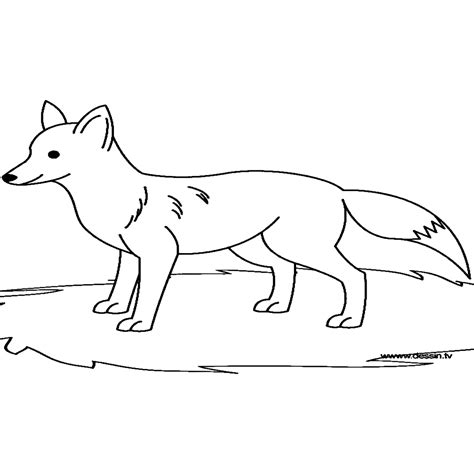 imagenes de un zorro para dibujar faciles inspirador dibujos zorros para colorear e imprimir