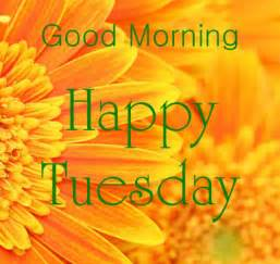 Tuesday Morning Morning Wishes On Tuesday Pictures Images