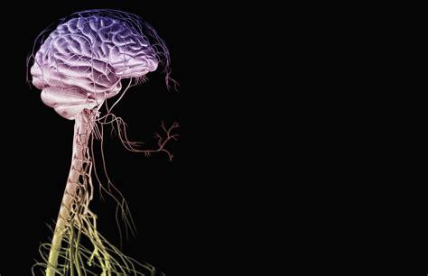 moebius syndrome symptoms   treatment