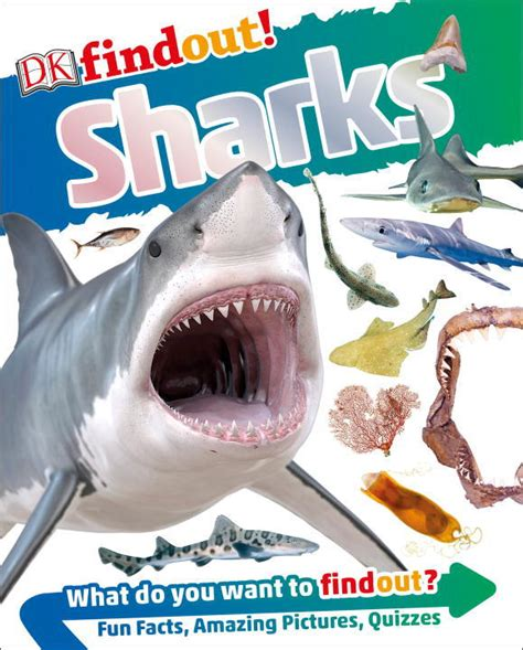 dk findout robots books dk findout sharks by fowler paperback