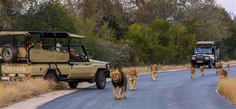 Kruger National Park   Toffie Tours