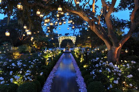 outdoor lighting for photography 5 spellbound outdoor wedding lighting ideas home