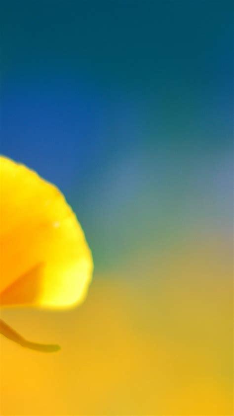 apple wallpaper yellow flower 768x1366 yellow flower desktop pc and mac wallpaper