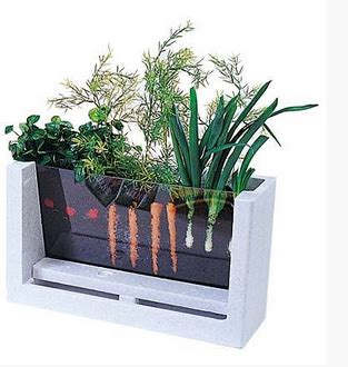 Indoor Garden Ideas Apartment My Garden 5 Innovative Indoor Apartment Gardening