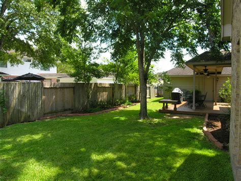 shade tree for small backyard mature trees provide wonderful shade