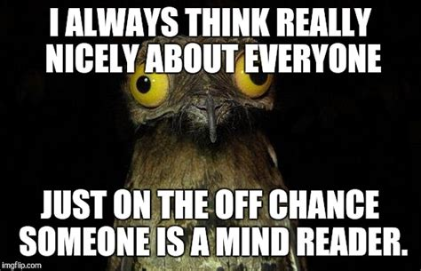 Potoo Meme - weird stuff i do potoo meme www pixshark com images