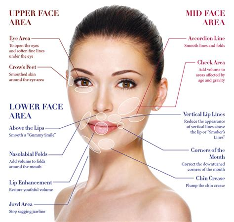 as i age i am getting jowls what hair style looks good 187 the inside to dermal fillers and what they do beauty