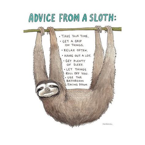 Asthma Sloth Meme - 25 best ideas about sloth humor on pinterest funny kid