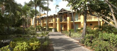 divi tamarijn aruba all inclusive resorts hoteles en aruba divi tamarijn aruba all inclusive