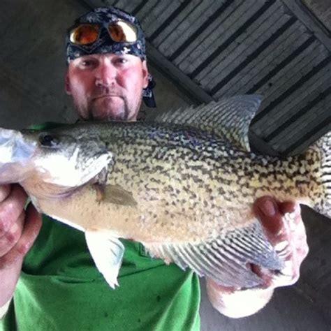 guntersville lake bream fishing report