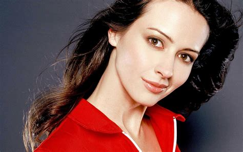 actress named amy amy acker profile biography pictures news