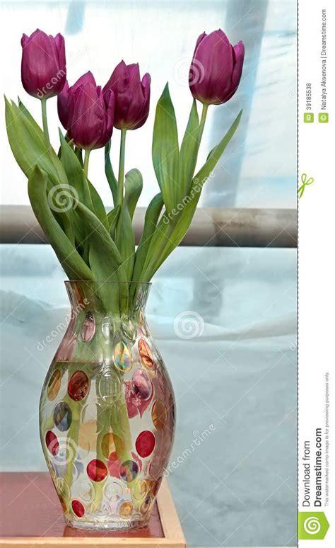 fresh tulips in vase stock photo image 39185538