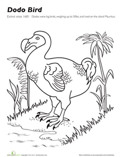 coloring pages of dodo birds dodo bird worksheet education com