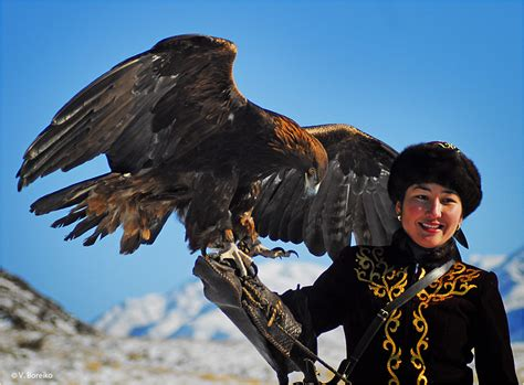 with golden eagles