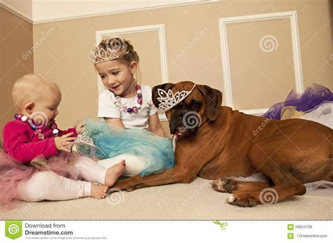 Dog Pulling Up Carpet two girls playing princess dress up with a dog stock photo