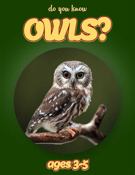 owl picture book owl facts for nonfiction book clouducated