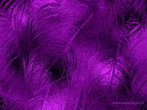 the color purple free 43 hd purple wallpaper background images to for free