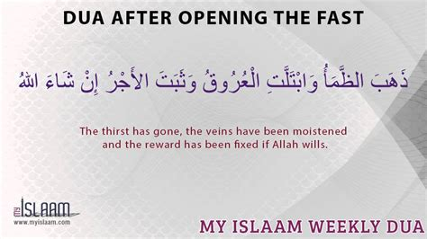 two weeks after the official opening of the little mermaidsection dua after opening fast youtube