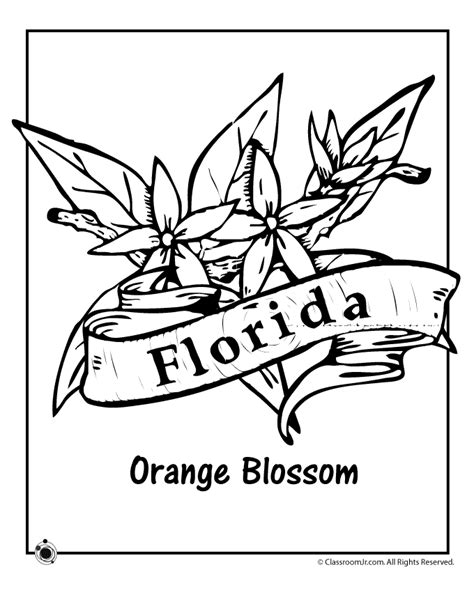 State Flower Coloring Pages state flower coloring pages flower coloring page