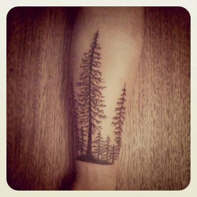 pine tattoo best 25 pine ideas on pine tree pine