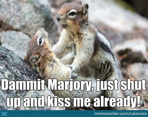 Dramatic Squirrel Meme - dramatic squirrel returns rather forcefully by