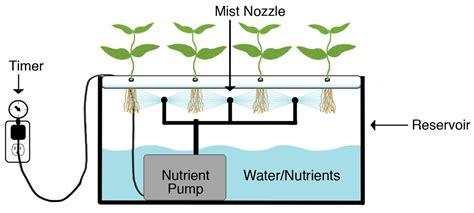 come coltivare cannabis in casa i tre principali metodi di coltivazione della cannabis