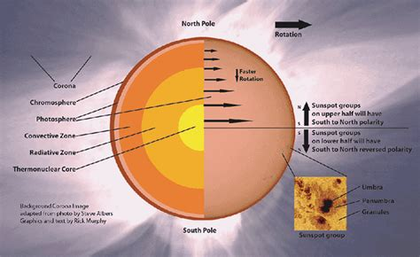 diagram of the sun with labels astronomy view images template