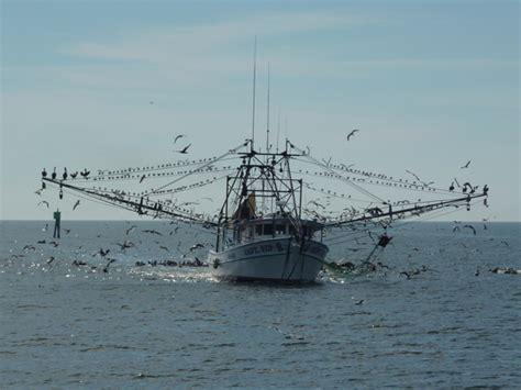 shrimp boat panama city fl shrimp boat panama city bing images