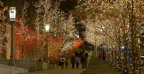 salt lake christmas tree lots 2015 temple square lights and concerts church news and events