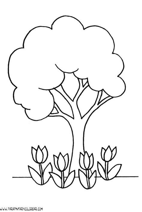 Dibujos De Rboles Para Colorear Para Ni Os | dibujos de 225 rboles para descargar imprimir y colorear