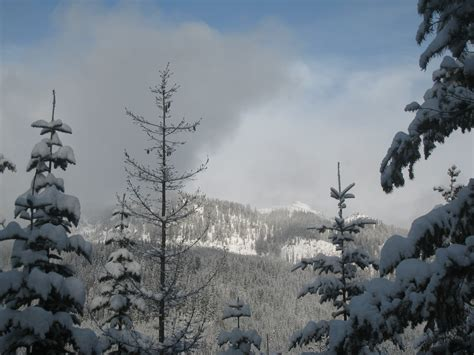 Cabin Creek Nordic Ski Area by Cross Country Skiing At Cabin Creek I Ve Got Your Sass