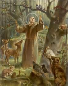 St Francis Stewardship A Way Of Francis Of Assisi