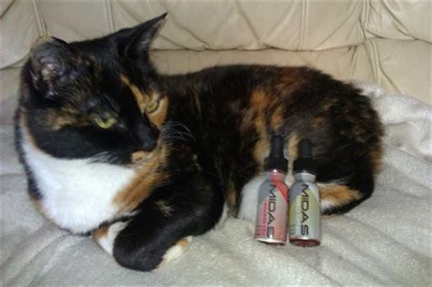 vaping pg propylene glycol  liquid harm  cat