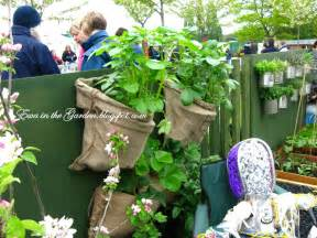 Vegetable Garden Ideas For Small Spaces Ewa In The Garden Vegetable Garden Ideas