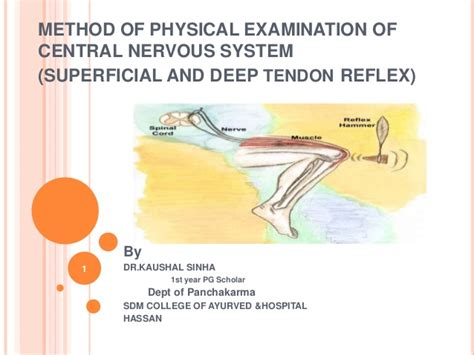 method  physical examination  central nervous system