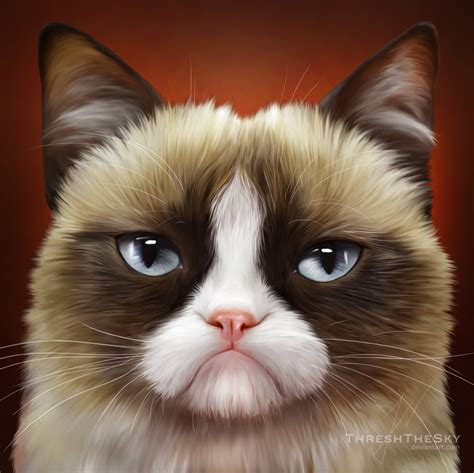 cat painting pics grumpy cat drawing www imgkid the image kid