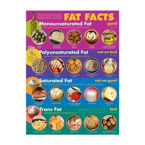 healthy fats nutrients fats facts see link http www foodpyramid 6