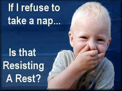My Nap Friend Pic 941 best quotes images on