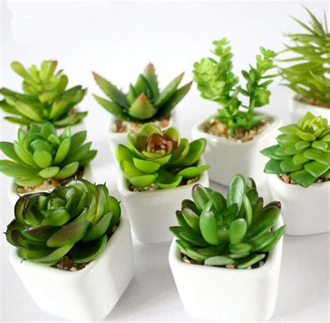 shop popular succulent plant pot from china aliexpress aliexpress com buy 1pc home decoration bonsai artificial
