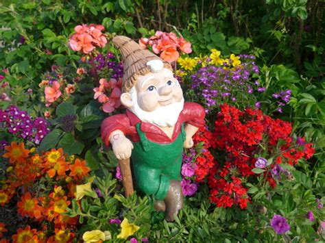 humble garden gnome   threat derwen garden