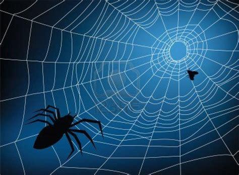 spider web background spider web backgrounds wallpaper cave