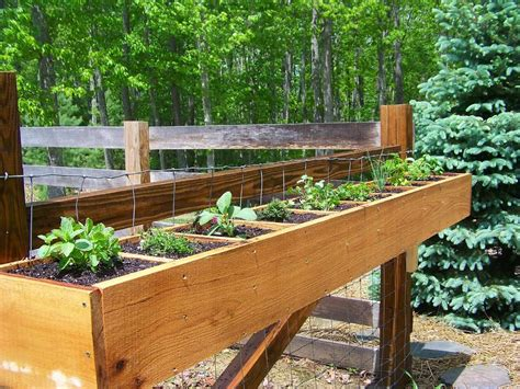 deck rail planter boxes help children learn about plants