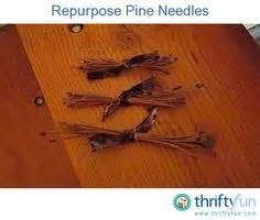 pine needle crafts for 1000 images about pine needle crafts on pine