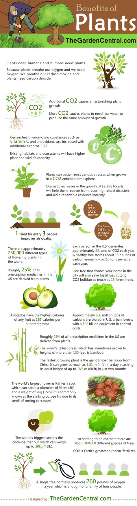 The Benefits of Plants [Infographic]