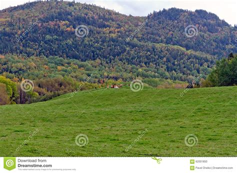 colorful hill colorful stock photo image 62001850
