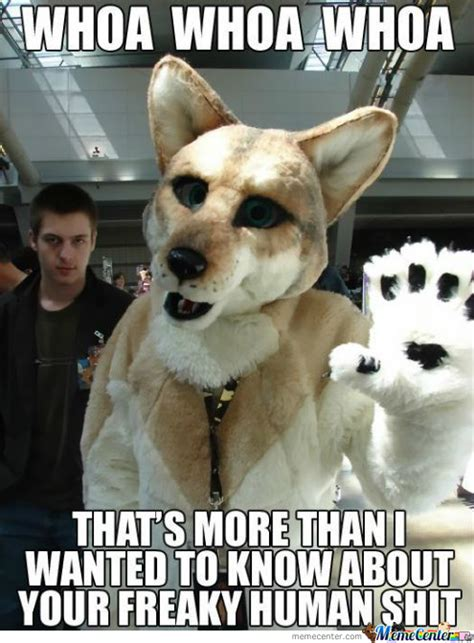 Gay Dog Meme - just furry things by silverwolf87 meme center