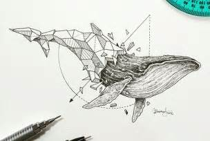 Pairs wildlife with geometry to create stunning lively drawings
