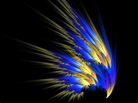 colorful feathers collected wallpaper feather wallpaper the free